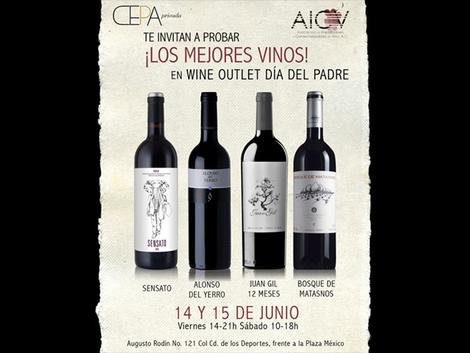 Aprovecha la oportunidad de probar y conocer vinos de importación